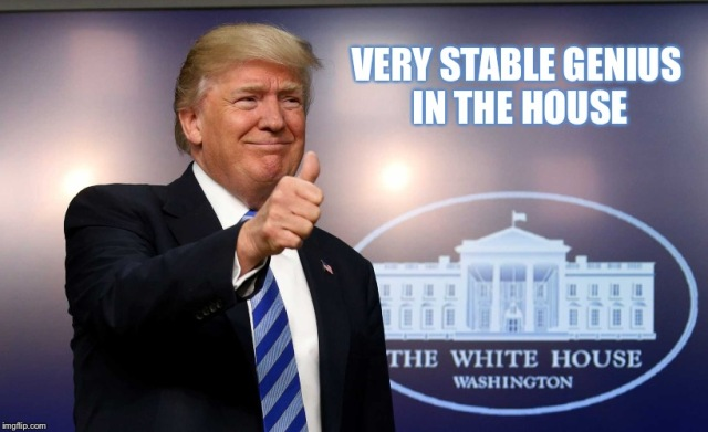 MEMEE - Very Stable Genius in the Houes