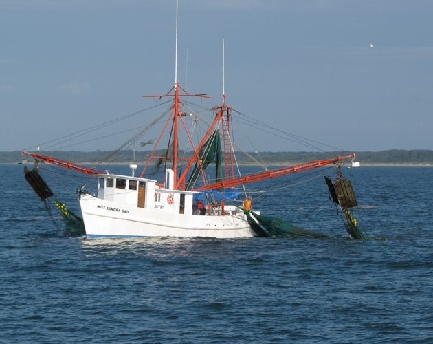 NC Fishing Boat - shrimp